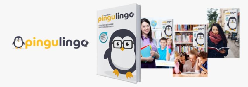 PinguLingo – efecte și rezultate