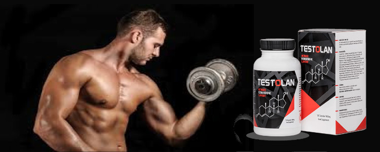 Ce este Testolan? Cum funcționează?