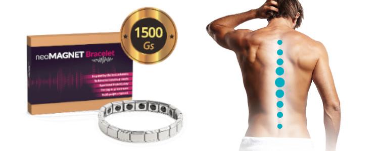 Ce NeoMagnet Bracelet pret? De unde să le cumperi? Pot cumpăra într-o farmacie sau pe internet a producătorului?